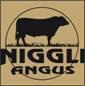 Niggli